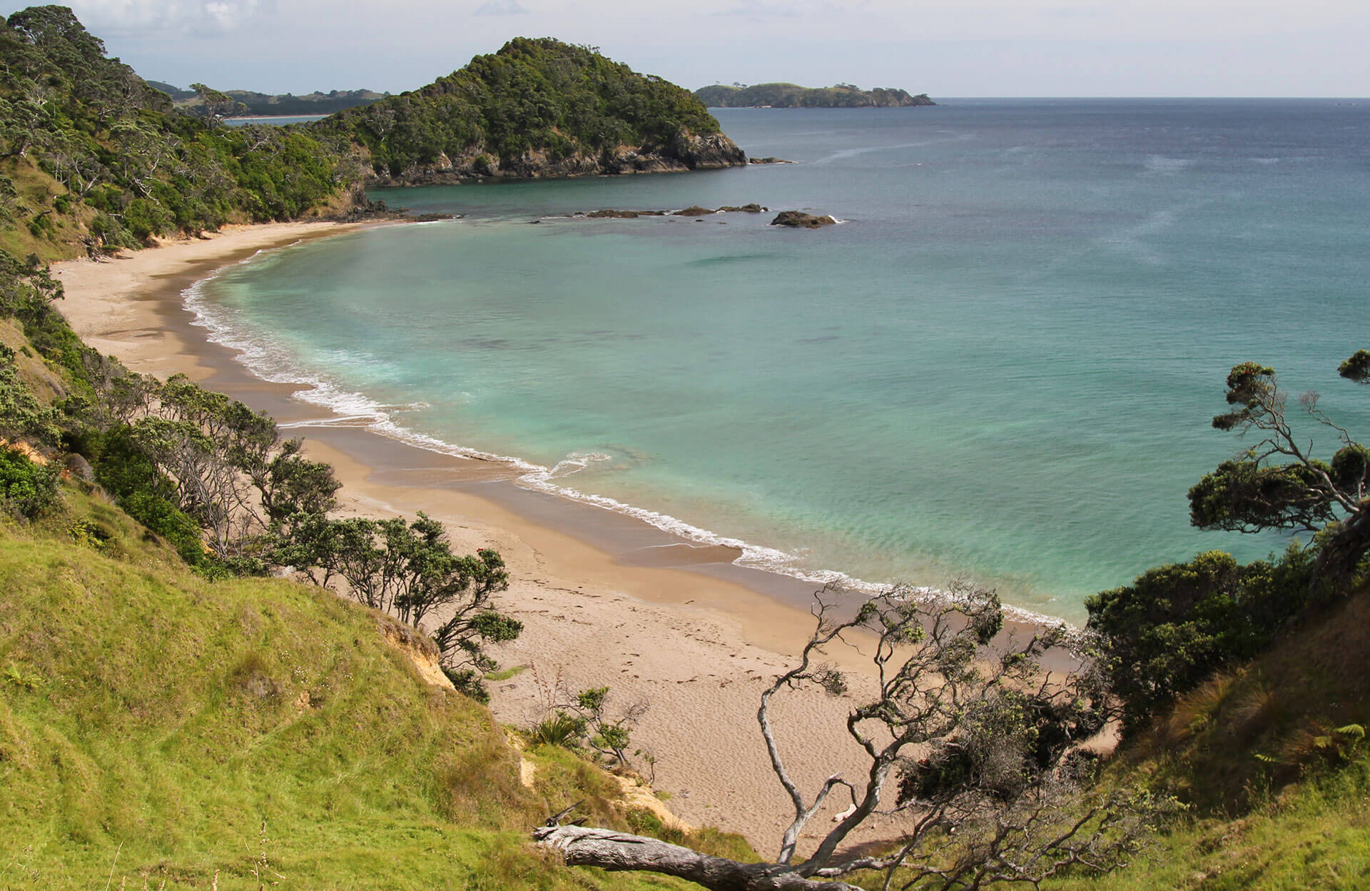The Winterless North: Bay of Islands and Northland