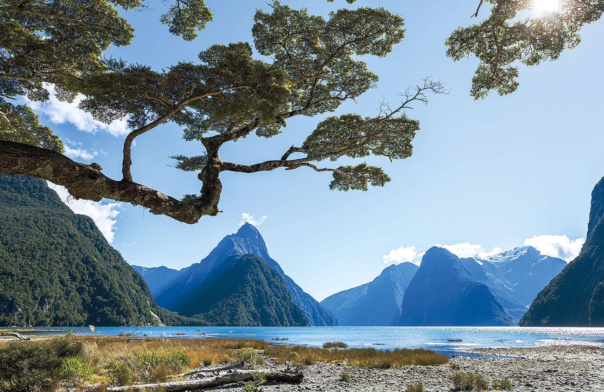New Zealand's Crown Jewels: Milford and Doubtful Sound